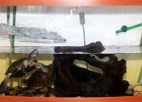 Аквариум для черепах16