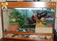 Аквариум для черепах2