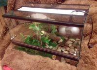Аквариум для черепах8