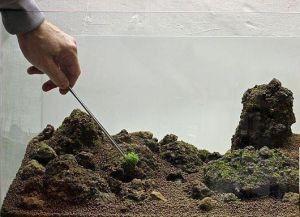 Террариум для красноухой черепахи своими руками4