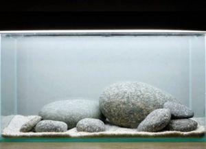 Террариум для красноухой черепахи своими руками3