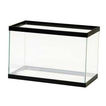прямоугольный аквариум для петушка