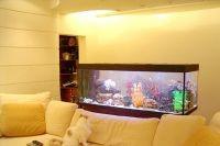 расположение аквариума по фен шуй 4