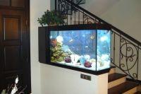 расположение аквариума по фен шуй 5