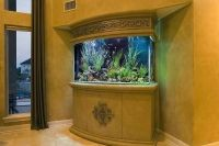 расположение аквариума по фен шуй 6