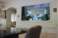 расположение аквариума по фен шуй 7