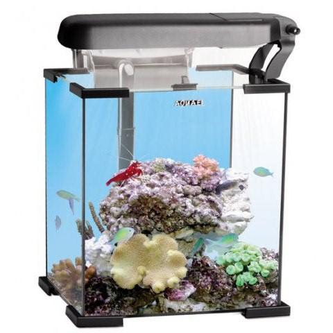 недорогой морской аквариум