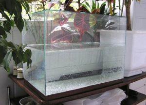 Аквариум своими руками из стекла14