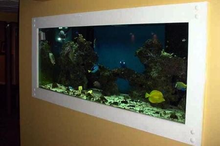 настенный тип аквариума