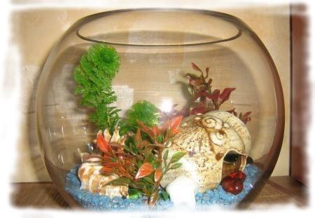 аквариум ваза
