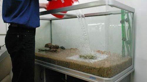 как подготовить воду для аквариума фото
