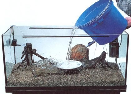 napolnyaem-akvarium-vodoj_1