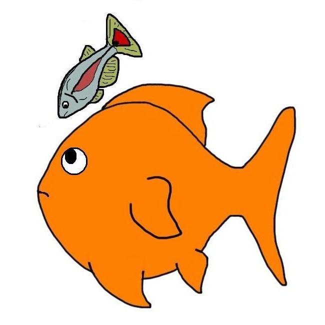 Расчет совместимости рыб