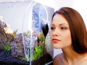 бесшумный компрессор для аквариума