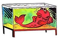 лечение аквариумной рыбки