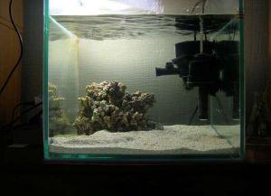 Что нужно для аквариума с рыбками1