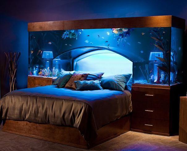 что нужно для красивого домашнего аквариума