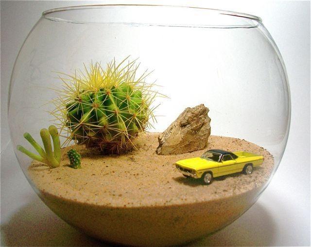 Мини-пустыня в стеклянном шаре