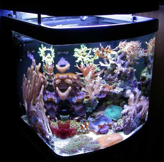 xtv оформить аквариум сверху