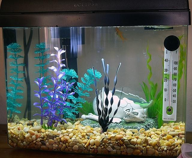 украшения для аквариума