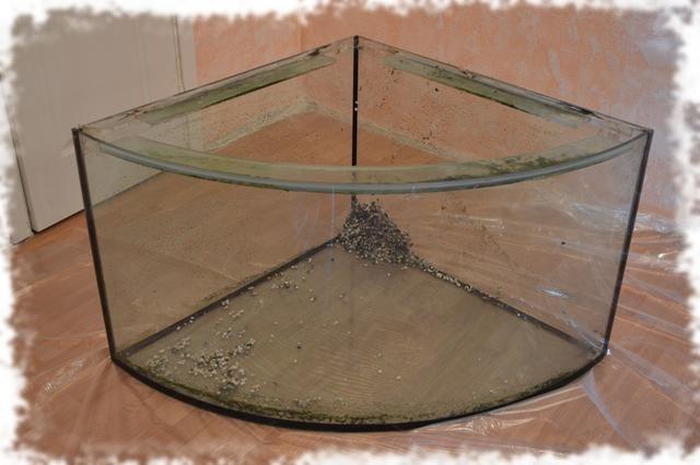 панорамный трехугольный аквариум