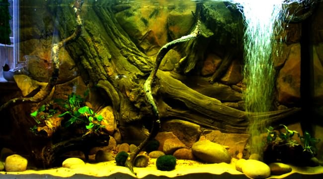 Фон аквариума своими руками.