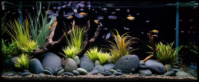 Aquarium-Artificial-Plant-Grass-2