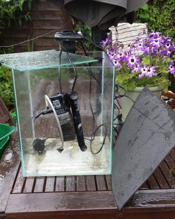 водонагреватель для аквариума aquael