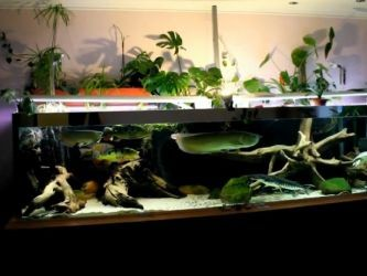 Фитофильтр для аквариума своими руками15