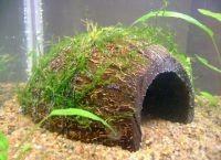 Гроты для аквариума13
