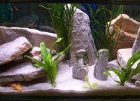 Гроты для аквариума21