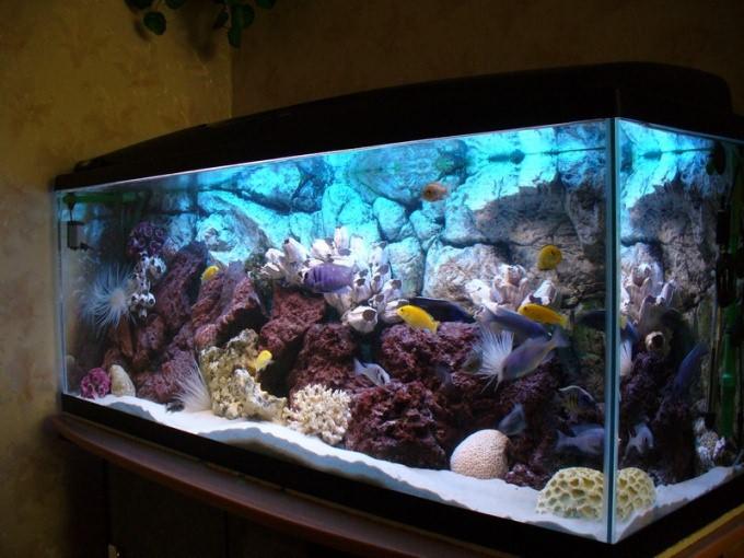 Как охладить аквариум