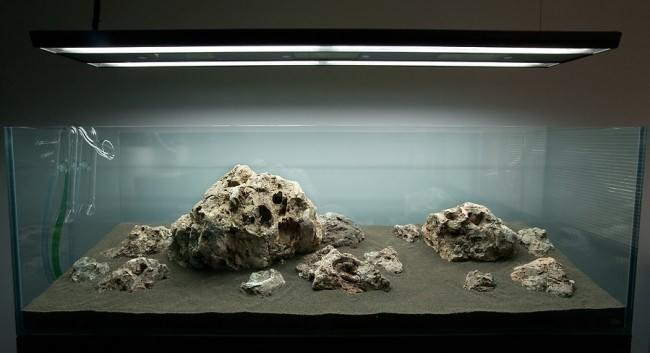 Питательный грунт для растений в аквариуме.