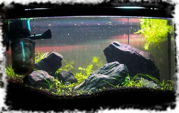 неправильная укладка аквариумного грунта