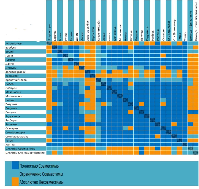 таблица совместимости рыбок