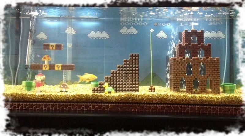 оформление бытового аквариума