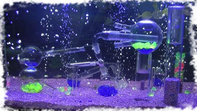 оформление аквариума в футуристическом стиле