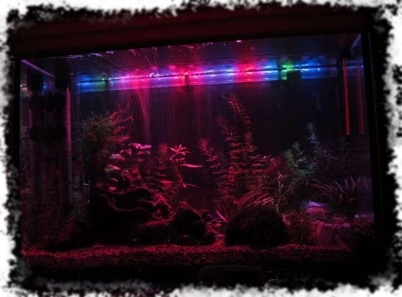 красивая подсветка аквариума