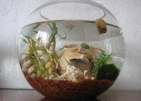Оформление аквариума своими руками4