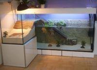 Оформление аквариума своими руками21