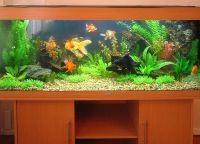 Искусственные растения для аквариума1