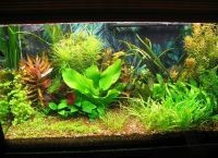 Искусственные растения для аквариума7