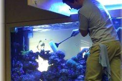 Как чистить аквариум1