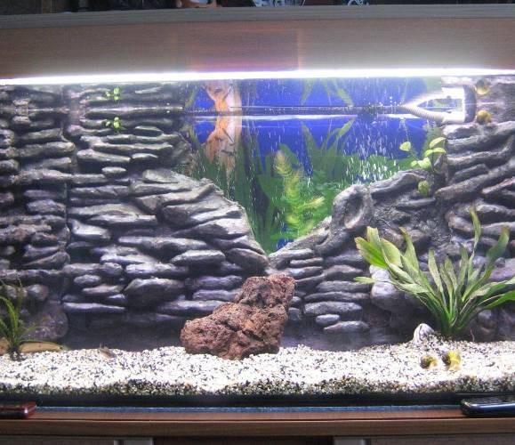 сделать фон аквариума