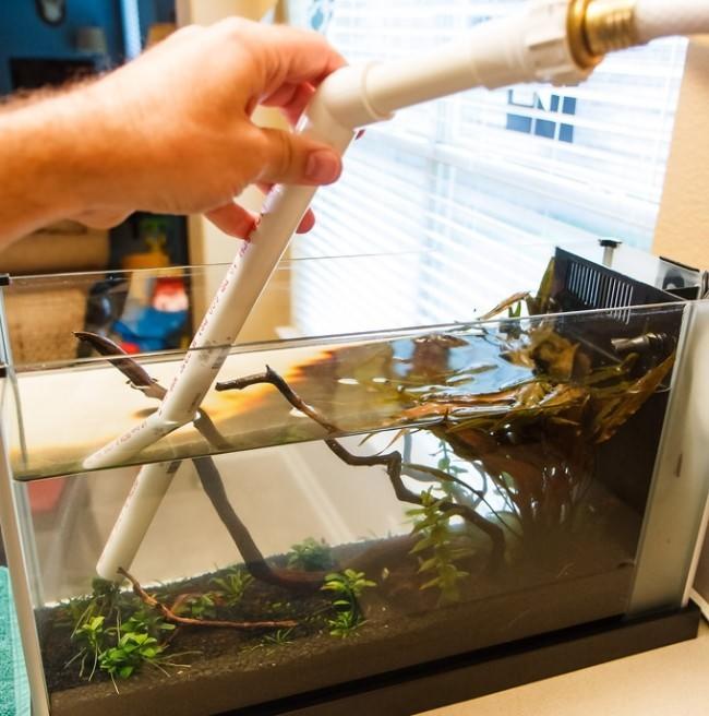 Чистка домашнего аквариума.