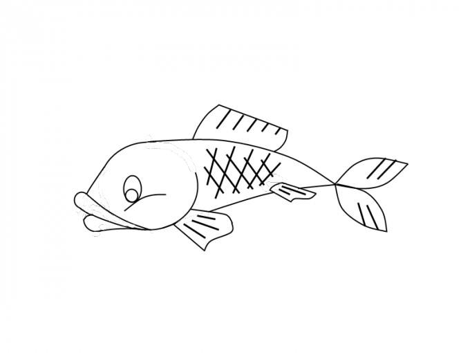 Как нарисовать рыбу[ZEBR_TAG_/strong>