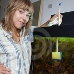 самостоятельная чистка аквариума