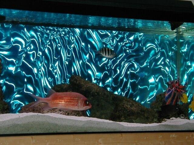 как оклеить заднюю стенку аквариума пленкой