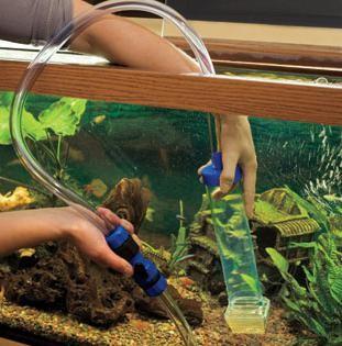 Аквариумы как менять воду в аквариуме