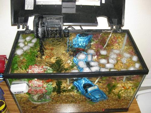 как охладить воду в аквариуме самостоятельно